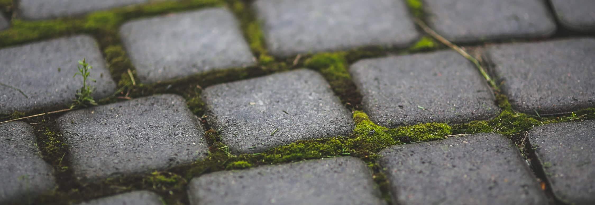 אבנים-משתלבות